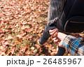 秋 デート カップルの写真 26485967
