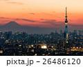 スカイツリー 都会 都市風景の写真 26486120
