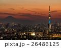 スカイツリー 都会 都市風景の写真 26486125