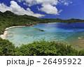 小笠原 父島 境浦海岸の写真 26495922