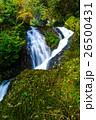 潜竜ヶ滝の紅葉 26500431