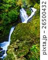 潜竜ヶ滝の紅葉 26500432