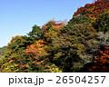 【奈良県】吉野山の紅葉 26504257
