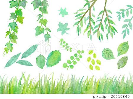 水彩イラスト 緑 セットのイラスト素材 26519349 Pixta