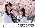 高校生と桜イメージ 26522532