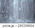 雪のブナ林 26539604