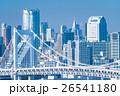 東京ウォーターフロント 26541180
