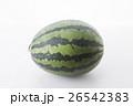 summer fruits  26542383