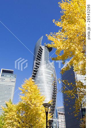 名古屋都市風景 名古屋駅前 名駅通のいちょう並木とスパイラルタワー 26543296