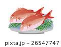 魚 魚類 海水魚のイラスト 26547747