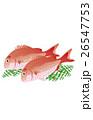 魚 魚類 海水魚のイラスト 26547753