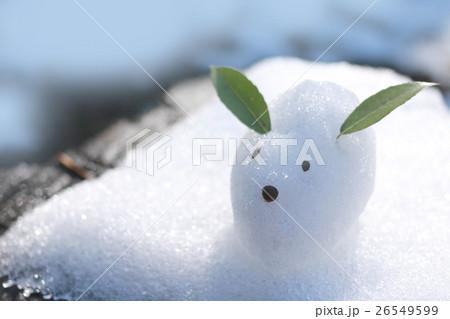 雪うさぎ 26549599