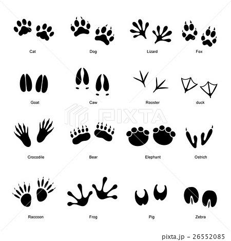 black animal tracks set vector u306e u30a4 u30e9 u30b9 u30c8 u7d20 u6750  26552085  pixta cowboy silhouette vector cow silhouette vector images