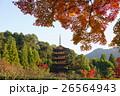 瑠璃光寺 五重塔 瑠璃光寺五重塔の写真 26564943