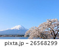 春の青空と桜 そして富士山 26568299