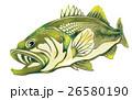魚イラスト 26580190