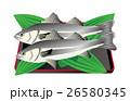 海産物 魚 海水魚のイラスト 26580345