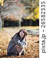 奈良県奈良市の奈良公園の紅葉の落ち葉の絨毯にしゃがみ込み見上げている若い女性 26582335