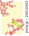 年賀状素材 メジロ 小鳥のイラスト 26610465