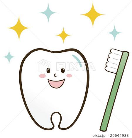 歯と歯ブラシ 26644988