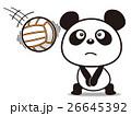バレーボールのパンダ 26645392