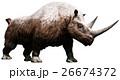 Woolly rhinoceros 26674372
