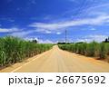 南大東島の風景 26675692