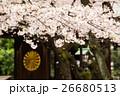 靖国神社の桜 26680513