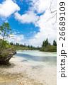 ニューカレドニア イルデパン島 26689109