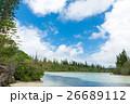 ニューカレドニア イルデパン島 26689112