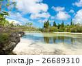 ニューカレドニア イルデパン島 26689310