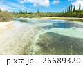 ニューカレドニア イルデパン島 26689320