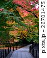 京都 寺 紅葉の写真 26701475