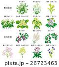 花 七草 風物詩のイラスト 26723463
