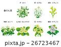 花 七草 風物詩のイラスト 26723467