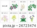 花 七草 風物詩のイラスト 26723474