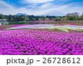 富士芝桜まつり 26728612