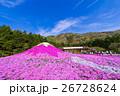 富士芝桜まつり 26728624