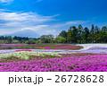 富士芝桜まつり 26728628