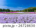 富士芝桜まつり 26728630