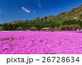 富士芝桜まつり 26728634