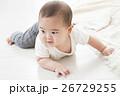 6ヶ月の男の子の赤ちゃん 26729255