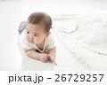 6ヶ月の男の子の赤ちゃん 26729257