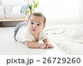 6ヶ月の男の子の赤ちゃん 26729260