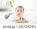 6ヶ月の男の子の赤ちゃん 26729261