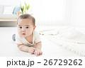 6ヶ月の男の子の赤ちゃん 26729262