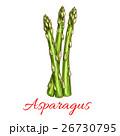 アスパラ アスパラガス ベジタブルのイラスト 26730795