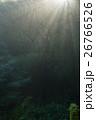 自然 光 霧の写真 26766526