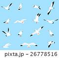 Vector set of beautiful seagulls. 26778516