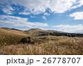 九州への旅、カルスト台地として知られています「平尾台」の風景を、ご紹介いたします。 26778707